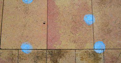 Esos extraños círculos azules….