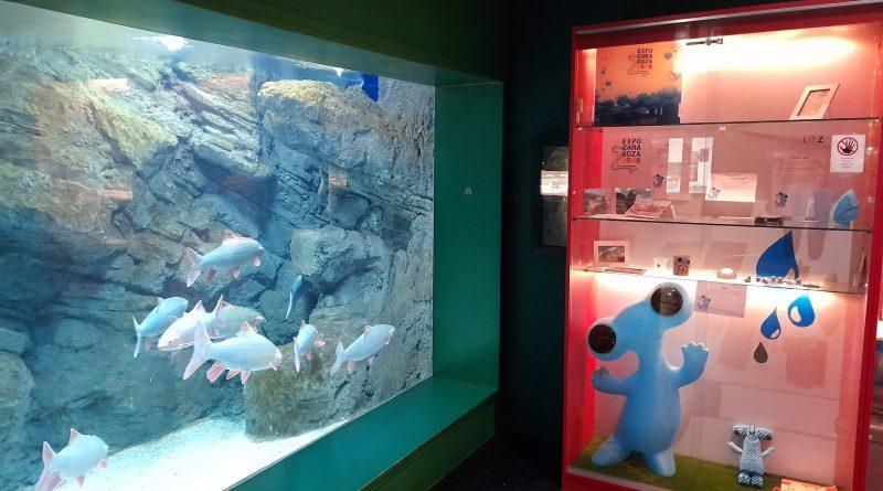 Acuario_museo